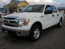Used 2014 Ford F-150 XLT SuperCrewCab 5ftBox 6cyl for sale in Brantford, ON