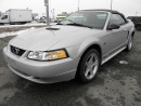 Used 2000 Ford Mustang GT Convertible for sale in Langley, BC