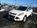 Used 2014 Ford ESCAPE SE * 1 OWNER * REAR CAM * BLUETOOTH * LOW KM for sale in London, ON