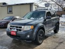 Used 2008 Ford Escape XLT,cert&etested for sale in Oshawa, ON
