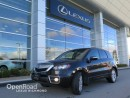 Used 2010 Acura RDX Tech Pkg for sale in Richmond, BC