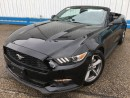 Used 2016 Ford Mustang V6 *CONVERTIBLE* for sale in Kitchener, ON