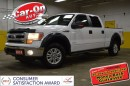 Used 2014 Ford F-150 XLT CREW 4X4 for sale in Ottawa, ON