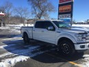 Used 2015 Ford F-150 PLATINUM for sale in Sudbury, ON