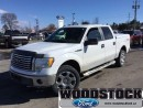 Used 2010 Ford F-150 XLT SuperCrew 4WD for sale in Woodstock, ON