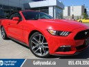 Used 2016 Ford Mustang EcoBoost Premium Leather Convertible for sale in Edmonton, AB