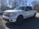 Used 2010 Ford F-150 PLATINUM * LEATHER * SUNROOF * NAV * REAR CAM * POWER SIDE STEP BARS DON'T WORK - SOLD AS IT IS for sale in London, ON