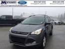 Used 2013 Ford Escape SE   - Low Mileage for sale in Kincardine, ON