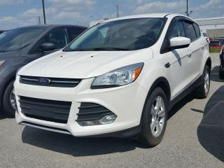 Used 2014 Ford Escape SE  1.6 Litre EcoBoost, 200A Pkg for sale in Scarborough, ON