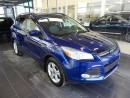 Used 2014 Ford Escape SE, Accident Free, Heated Seats for sale in Edmonton, AB
