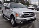 Used 2013 Ford F-150 XLT 3.5 Ecoboost for sale in Aurora, ON
