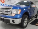 Used 2014 Ford F-150 XLT in stylish blue and ready just for you! for sale in Edmonton, AB