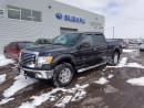 Used 2010 Ford F-150 XLT for sale in Dieppe, NB