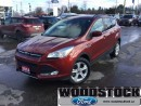 Used 2014 Ford Escape SE  Local ONE Owner Trade, Sync, Heated Seats for sale in Woodstock, ON