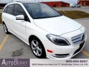 Used 2013 Mercedes-Benz B-Class B250 - PANO - SPORT for sale in Woodbridge, ON