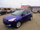 Used 2014 Ford Escape SE for sale in Brampton, ON