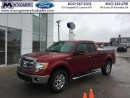 Used 2014 Ford F-150 for sale in Kincardine, ON