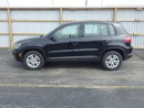Used 2013 Volkswagen Tiguan AWD for sale in Cayuga, ON
