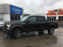 Used 2015 Ford F-150 XLT SPORT for sale in London, ON