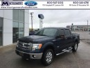Used 2013 Ford F-150 XLT   - Bluetooth -  SiriusXM for sale in Kincardine, ON
