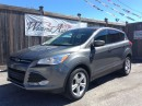 Used 2014 Ford Escape SE for sale in Stittsville, ON