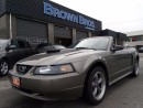 Used 2002 Ford Mustang GT, CNVT, LTHR, FUN! for sale in Surrey, BC