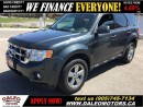 Used 2009 Ford Escape XLT  3.0L V6 128 KM SUNROOF LEATHER for sale in Hamilton, ON