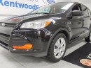 Used 2014 Ford Escape Escaping our sixth and seventh winters with this treasure for sale in Edmonton, AB