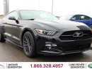 Used 2015 Ford Mustang EcoBoost Premium 50th Anniversary Edition - Local One Owner Trade In | No Accidents | 3M Protection Applied | 2 Sets of Rims and Tires Included | Heated Leather Seats | Bluetooth | Dual Zone Climate Control with AC | Heated/Cooled Front Seats | Navigation for sale in Edmonton, AB