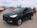 Used 2014 Ford Escape ACCIDENT FREE 1 OWNER for sale in Edmonton, AB