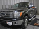 Used 2014 Ford F-150 for sale in Red Deer, AB