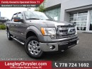 Used 2014 Ford F-150 XLT for sale in Surrey, BC