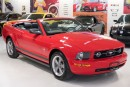 Used 2006 Ford Mustang V6 for sale in Paris, ON
