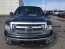 Used 2011 Ford F-150 S/CAB ECO 4X4 ACCIDENT FREE for sale in Edmonton, AB