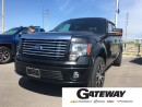 Used 2010 Ford F-150 Harley-Davidson for sale in Brampton, ON