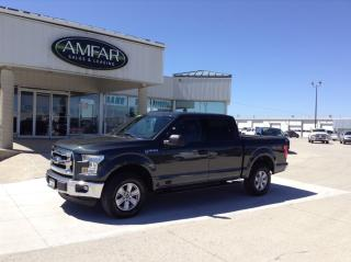 Used 2015 Ford F-150 4x4 / CREW CAB / NO PAYMENTS FOR 6 MONTHS !! for sale in Tilbury, ON