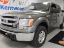 Used 2013 Ford F-150 XLT V6 Ecoboost!!! Look at this dime! for sale in Edmonton, AB