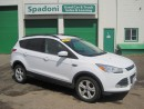 Used 2015 Ford Escape SE for sale in Thunder Bay, ON