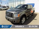 Used 2009 Ford F-150 LEATHER/SUNROOF/BACKUP CAMERA for sale in Edmonton, AB