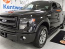 Used 2014 Ford F-150 FX4! 5.0L V8! HEATED SEATS! BACK UP CAM! for sale in Edmonton, AB