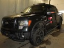 Used 2012 Ford F-150 FX4 4x4 SuperCrew Cab for sale in Edmonton, AB