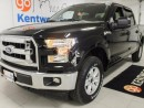 Used 2017 Ford F-150 XLT 5.0L V8 mean fighting machine for sale in Edmonton, AB