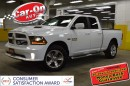 Used 2014 Dodge Ram 1500 Sport 4x4 LEATHER SUNROOF for sale in Ottawa, ON