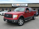 Used 2009 Ford F-150 FX4 Crew Cab 4X4 for sale in Gloucester, ON