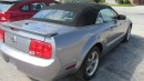 Used 2007 Ford Mustang for sale in Chatsworth, ON