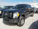 Used 2010 Ford F-150 FX4 for sale in Innisfil, ON