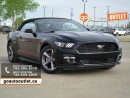 Used 2016 Ford Mustang V6 for sale in Edmonton, AB