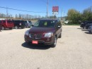 Used 2009 Pontiac Montana SV6 for sale in Paris, ON