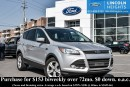 Used 2014 Ford Escape SE FWD for sale in Ottawa, ON