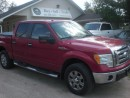 Used 2009 Ford F-150 XLT  HIGHWAY MILEAGE for sale in Mansfield, ON